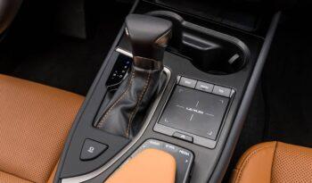 Lexus UX full